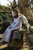 Angel - Old fashion christmas scenes. Stock Image