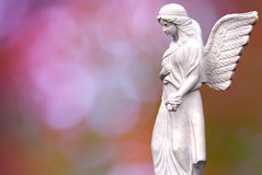 Angel over beautiful soft blurred background Royalty Free Stock Images
