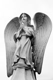 Angel Prayer. An girl angel praying with her wings spread Royalty Free Stock Images