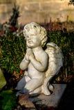 Angel Praying stock foto