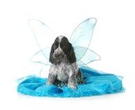 Angel puppy Stock Image