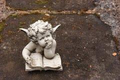 Angel reading a book Stock Photos