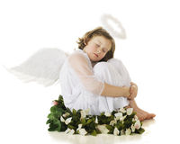 Angel at Rest. A young elemantary angel resting in a ring of spring flowers and foliage.  On a white background Stock Photos