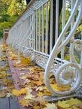 Angel's bridge in Tartu, Estonia. Autumn view of Angel's bridge in Tartu, Estonia stock images