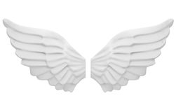 The angel's wings Stock Images