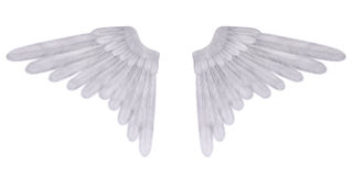 Angel's wings Royalty Free Stock Images