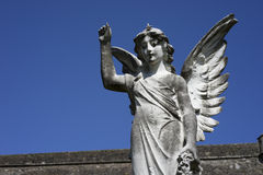 Angel salute - horizontal Stock Images