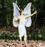 Angel shooting the arrows. Stock Photos