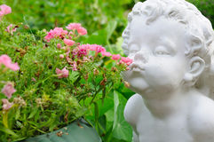 Angel Smelling Flowers Royalty Free Stock Photography