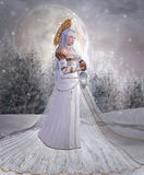 Angel of snow Stock Photography