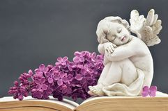Angel and spring flower. Angel guardian and spring flower royalty free stock photography