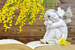 Angel and spring flowers. On wooden background stock photography