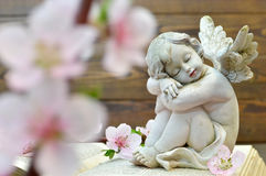 Angel and and spring flowers. On wooden background royalty free stock photography