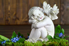 Angel and spring flowers. On wooden background stock image