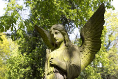 The Angel from the spring mystery old Prague Cemetery, Czech Republic Stock Image