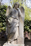 The Angel from the spring mystery old Prague Cemetery, Czech Republic Stock Photo