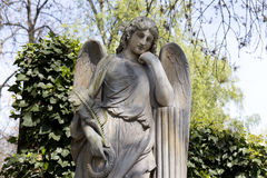 The Angel from the spring mystery old Prague Cemetery, Czech Republic Royalty Free Stock Photos