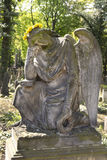 The Angel from the spring mystery old Prague Cemetery, Czech Republic Royalty Free Stock Photo