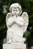 Angel statue. Cute winged Angel statue in praying pose Stock Photography