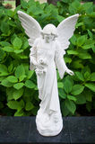 Angel statue. Statue of an angel looking down Royalty Free Stock Images