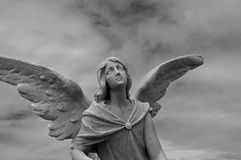 Free Angel Statue Royalty Free Stock Image - 8330676
