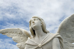 Angel statue. A statue of an angel looking up at the sky Royalty Free Stock Image