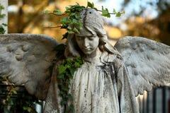 Angel statue. Beautiful angel statue Stock Image