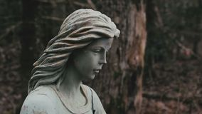 Angel Statue. Cinematic footage of angel statue in forest stock footage