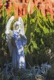 Angel Statue con las alas y las plantas blancas del cactus del desierto de Arizona imagen de archivo