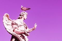 Angel statue with gull on the head. Pink magenta sky. Copy space. Pink toned royalty free stock photos