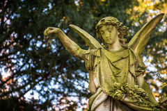 Angel Statue in Nature in Cemetery Royalty Free Stock Photo