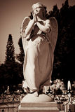 Angel statue praying Royalty Free Stock Photo
