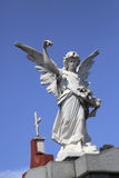 Angel statue at Recoleta cemetery,  Buenos Aires Stock Photos