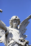 Angel statue at Recoleta  cemetery, Buenos Aires Royalty Free Stock Image