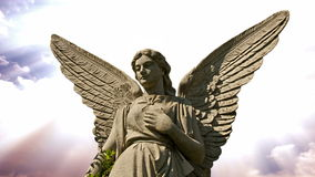 Angel 0103 Stock Images