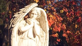 Angel statues close up. Static camera stock video footage