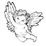Angel. Vector illustration of flying angel or cupid Royalty Free Stock Image