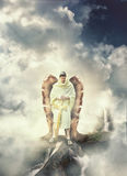 Angel Warrior Royalty Free Stock Images