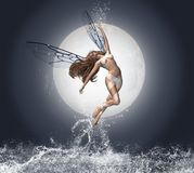 Angel of the water. Fantastic fairy flying over sea in the moon light Stock Photos