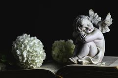 Angel and white flowers. On black background Royalty Free Stock Image