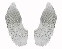 Angel wing isolated on white background.  stock photos