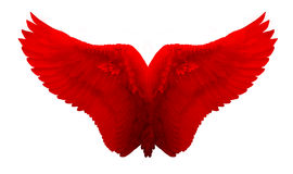 Angel Wing rouge a isolé photo stock