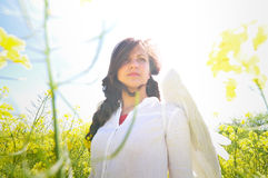 Angel wings Royalty Free Stock Images