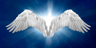 Angel Wings 2 Stock Image