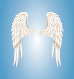 Angel wings. Vector illustration of angel wings on blue background Stock Photography