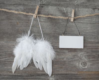 Free Angel Wings Stock Photography - 30023472