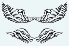Angel wings. Isolated on blue batskground Stock Images