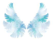 Angel wings. Blue angel wings on white, processed fractal stock illustration
