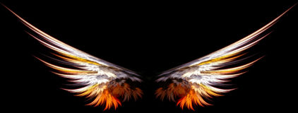 Angel wings. Wings abstract - can be easily added to your own design Stock Image