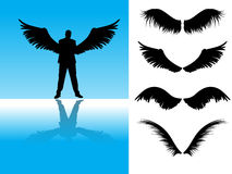 Angel Wings Stock Images
